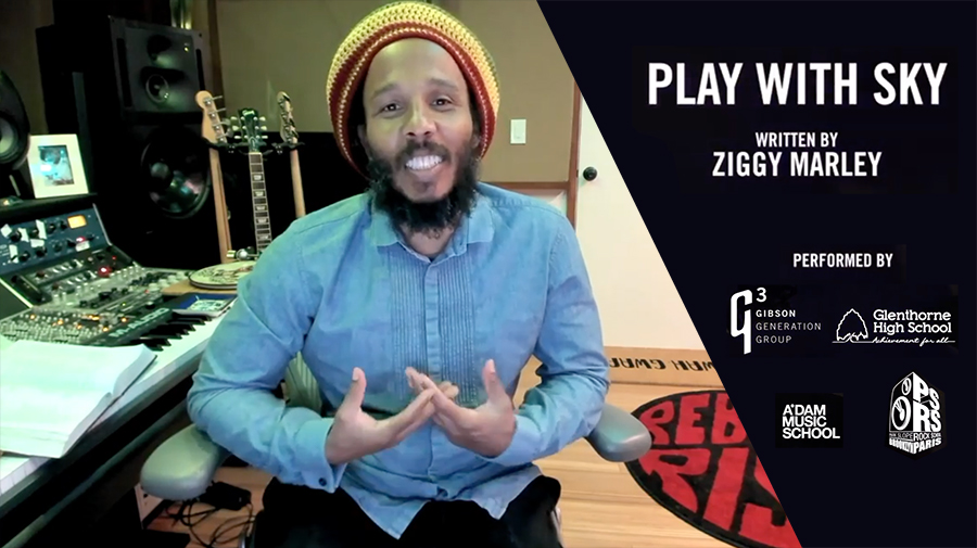 Play With Sky de Ziggy Marley por Furious Monkey House